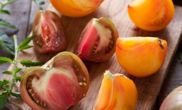 apero-detox-aux-tomates-anciennes2